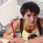 Atrapar a una mosca