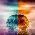 Diferencias de los lados del cerebro