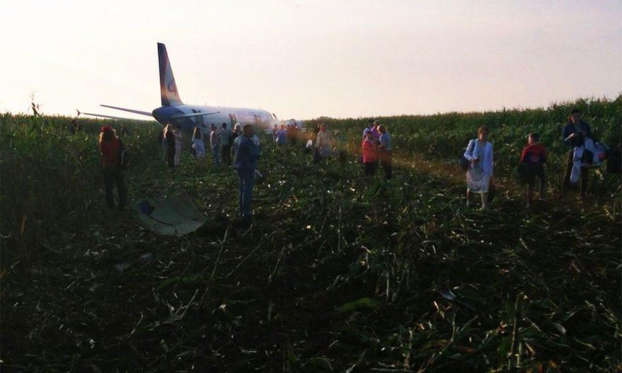 Avión aterriza de emergencia después de golpear unas gaviotas.