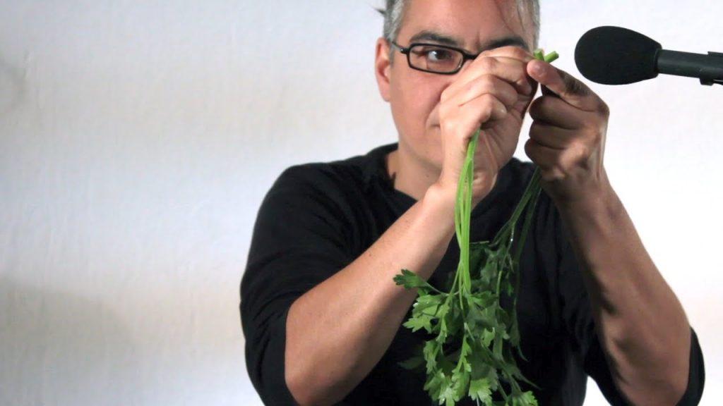 La orquesta de vegetales
