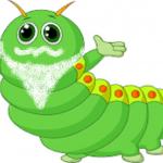 el gusano sin boca ni intestino