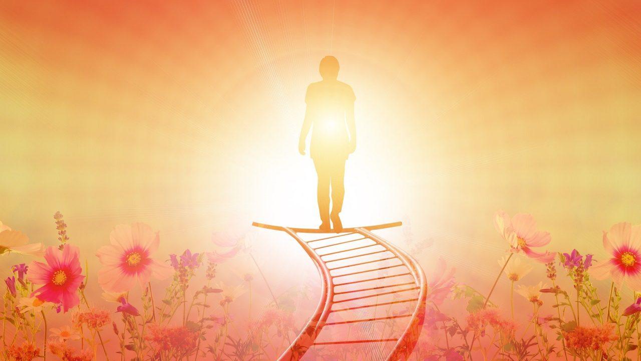 La muerte conlleva una pérdida inmediata de peso corporal, la cual se relacionó con la partida del alma