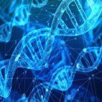 Cadenas de ADN