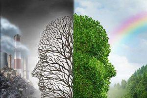 La ciencia y el medio ambiente
