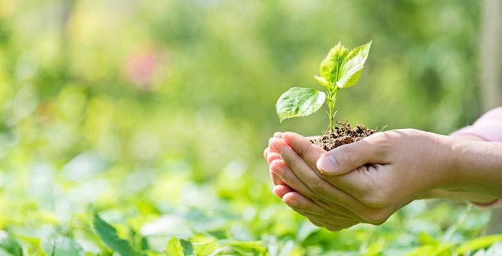 Medio ambiente y la ciencia