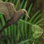 dinosaurio como colibri