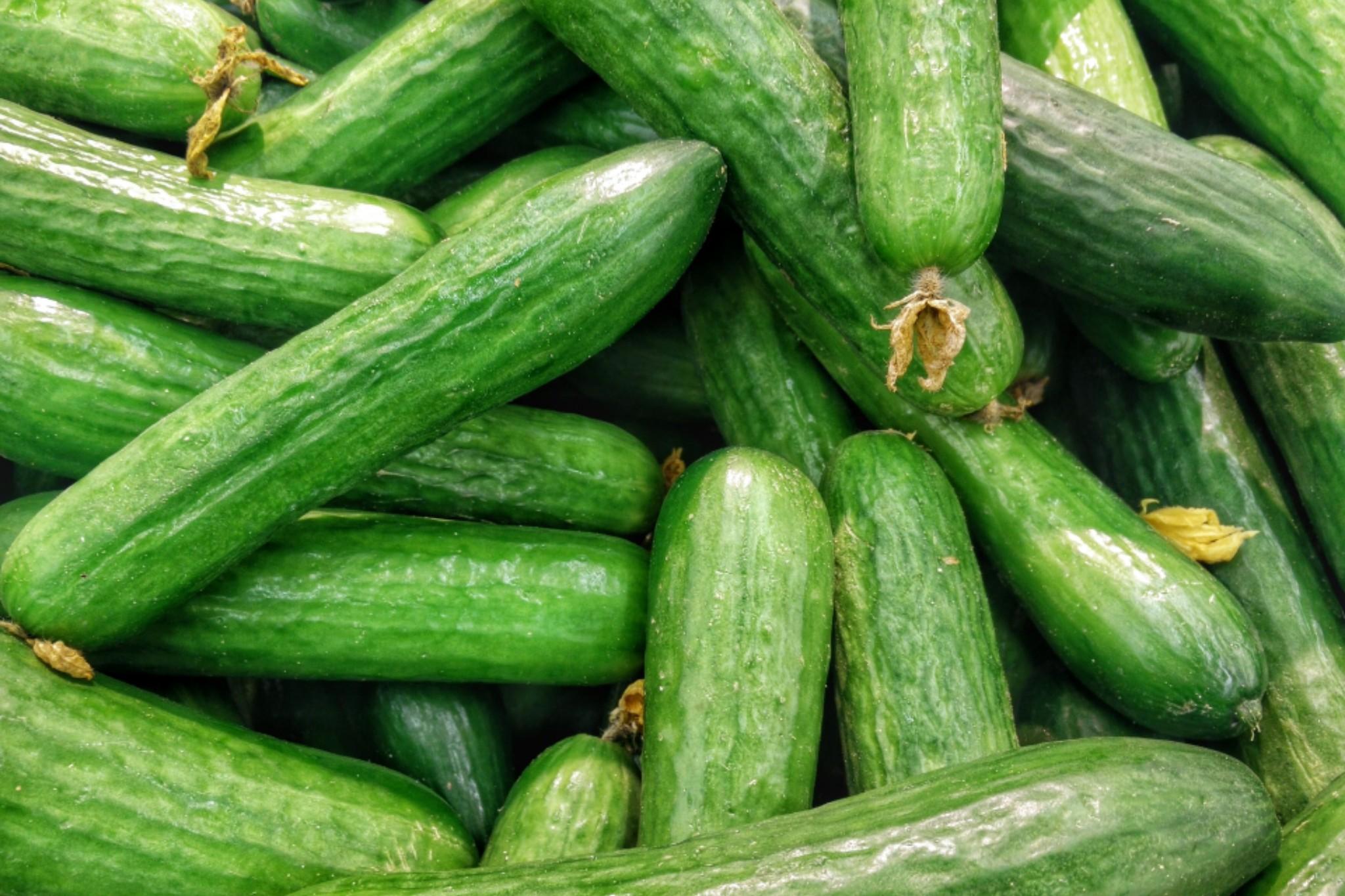 El pepino tiene propiedades maravillosos para la salud