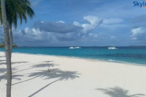 Playa maldiva de color azul ,arenas blancas con palmeras sembradas en ella