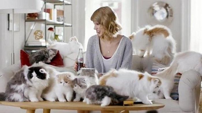 Taylor Swift se muestra con sus gatos, que están por todas partes