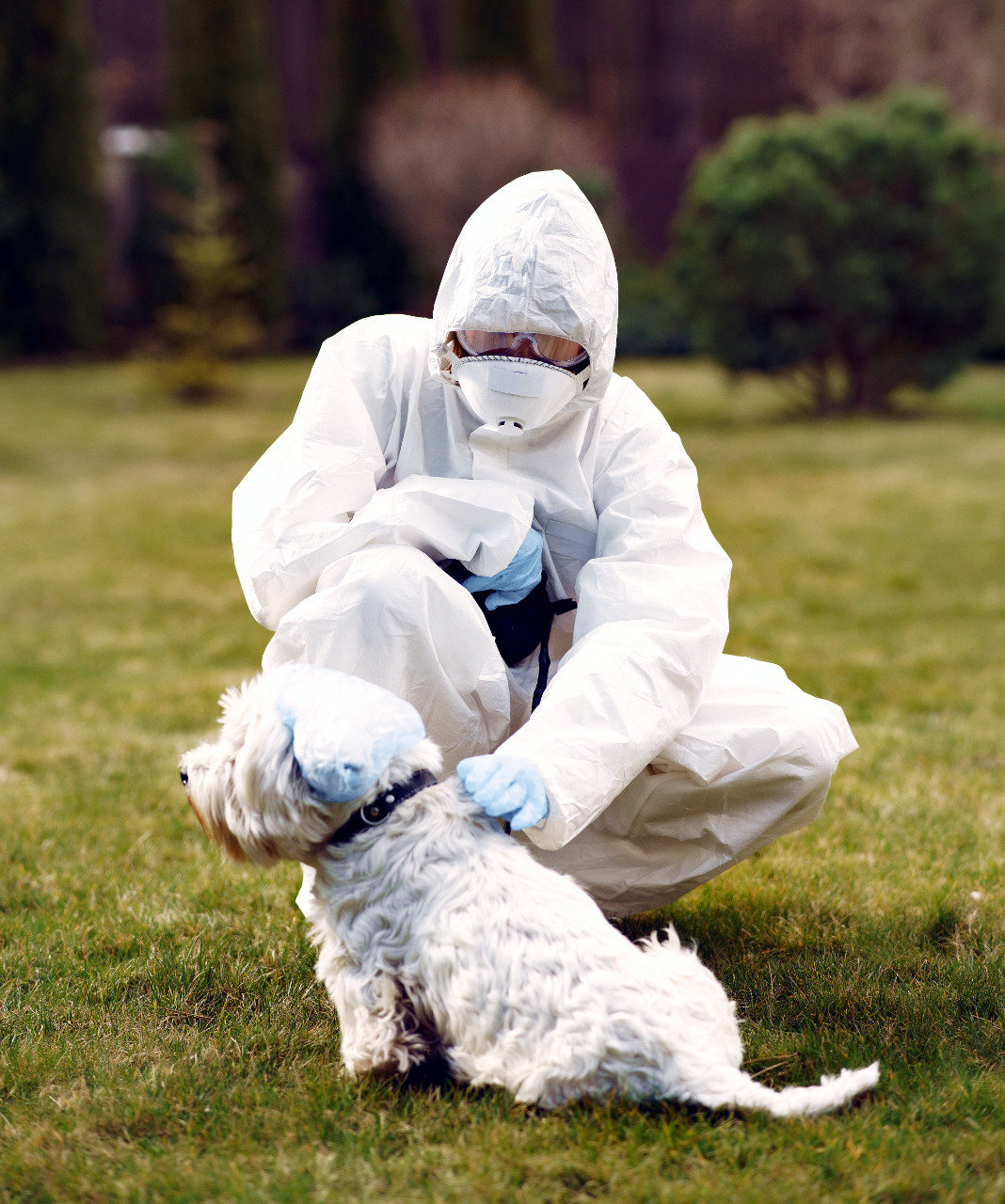 El hombre y el animal, juntos en la salud y la enfermedad