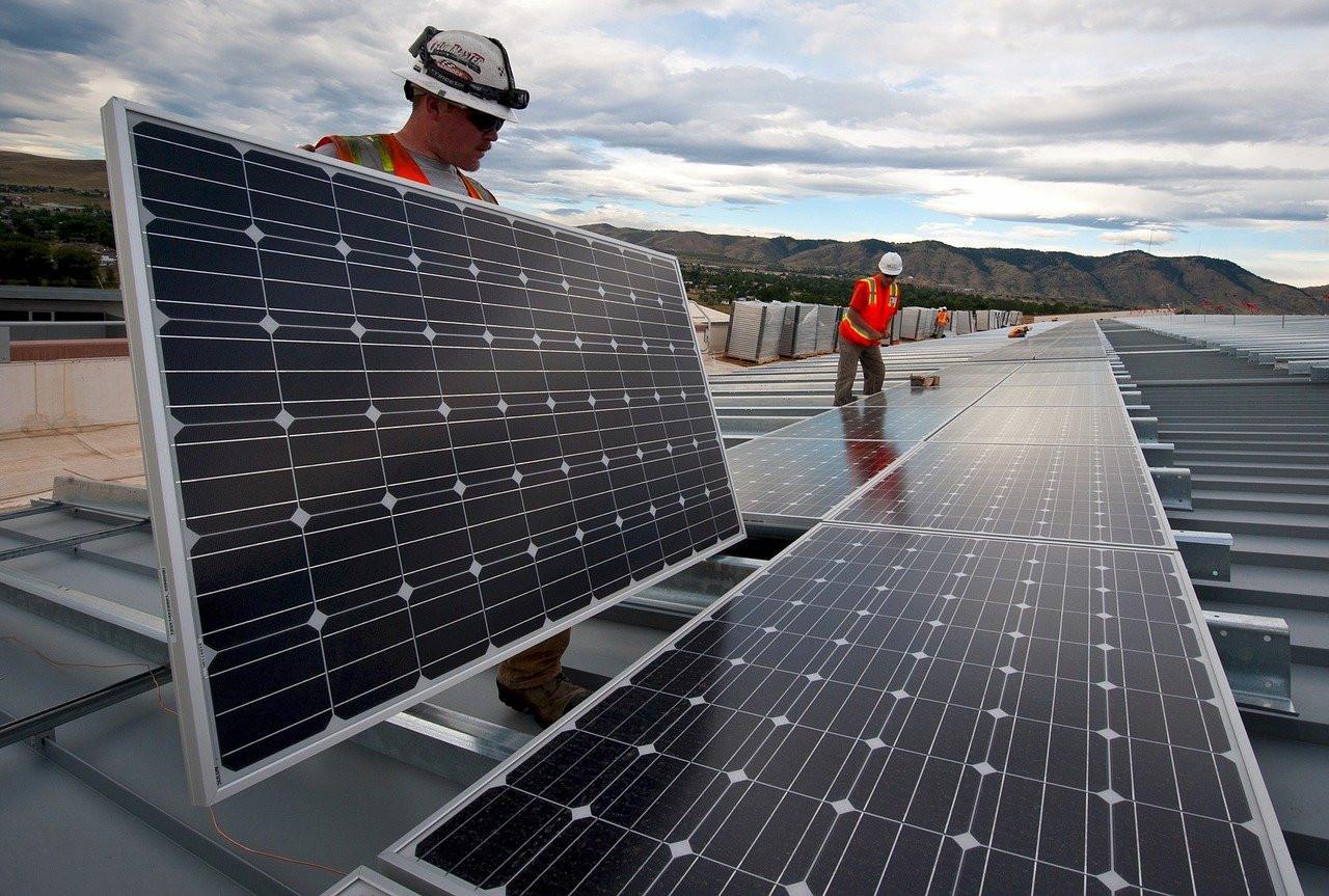 """Árboles solares, la reorganización """"natural"""" del sistema fotovoltaico"""