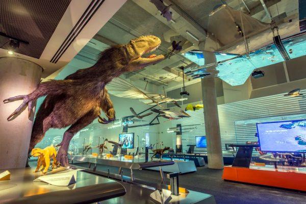 Museo de Ciencia en Miami