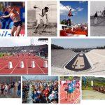 cuántos deportes existen