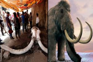 Yacimiento de mamuts