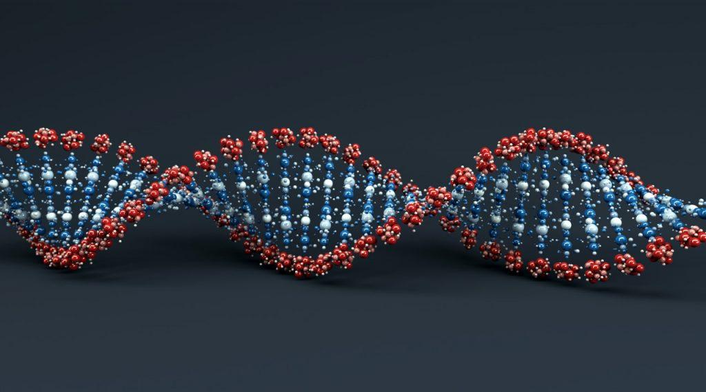 Cromosoma neandertal abunda en Europa y sur de Asia