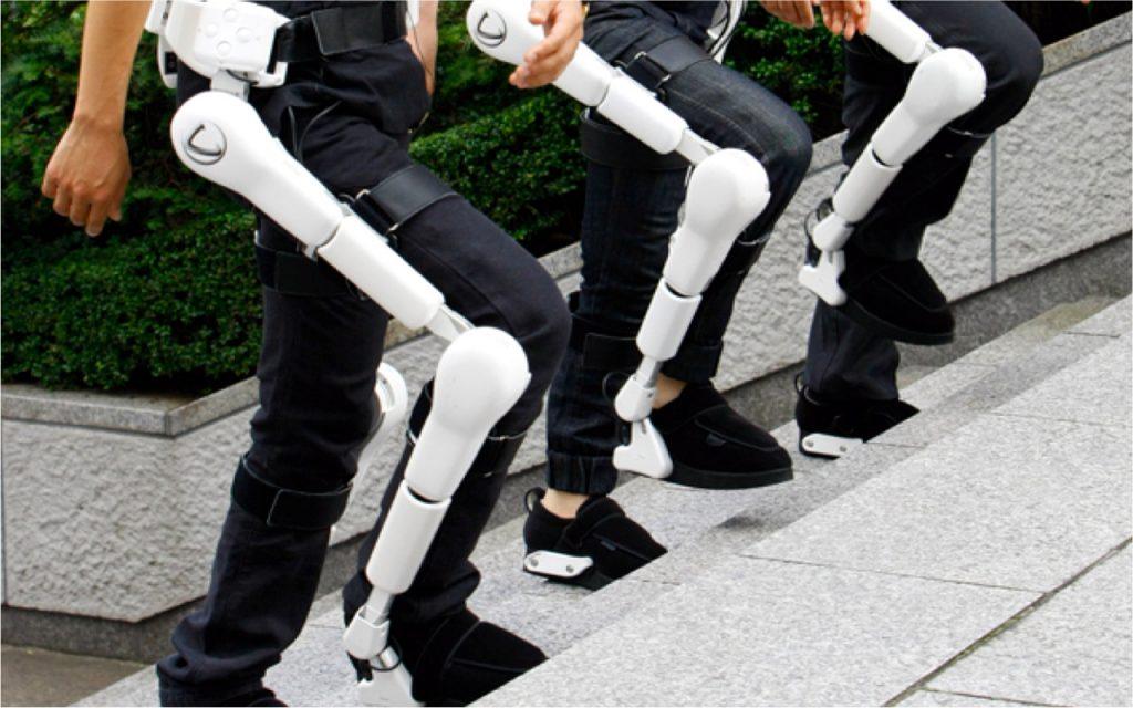 ¿Qué tipo de exoesqueletos existen?