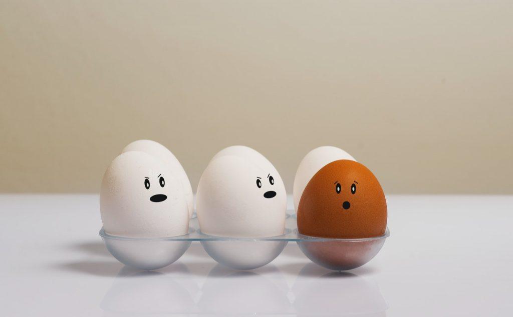 Experimentos caseros sencillos: huevos giratorios