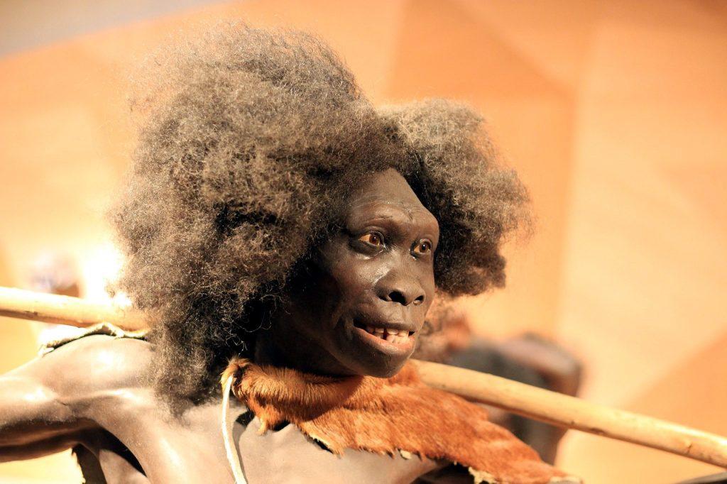 Relación de los neandertales con los casos graves de coronavirus