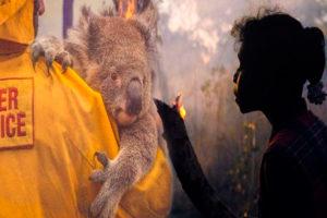 Australia un paraíso en ruinas