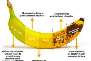 Estados de las frutas y sus beneficios para tu salud