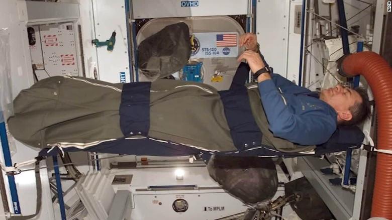NASA tiene calamares hawaianos en el espacio 7