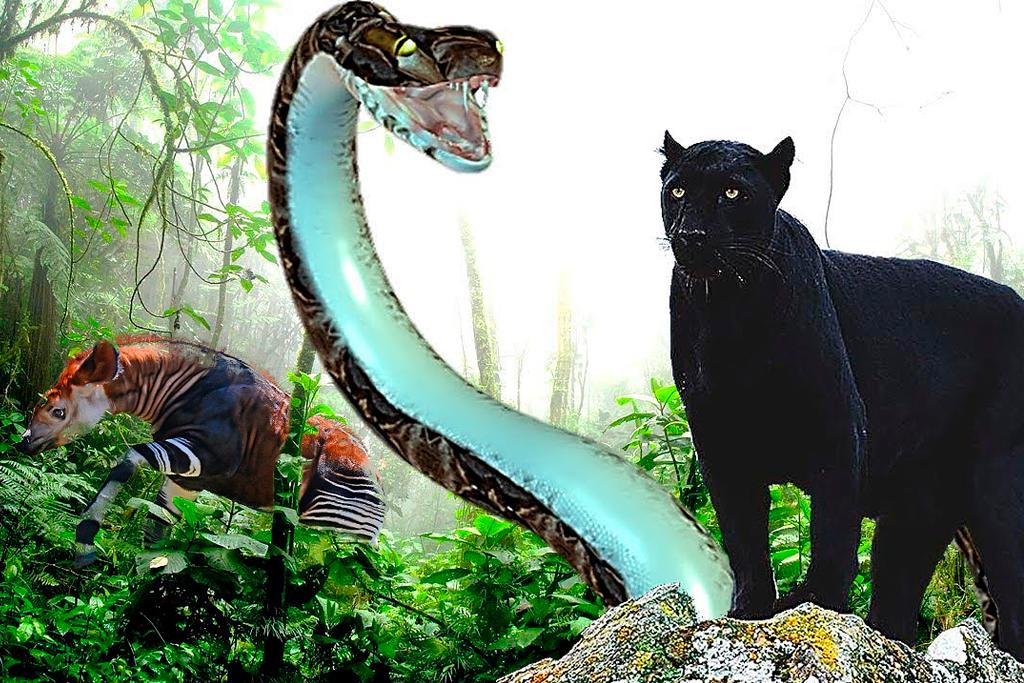 15 Animales Extraños Descubiertos en la Selva Amazónica